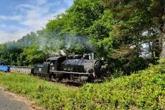 Sunset-Prayer-Train-NDoP-2019-17